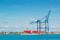 Porto marittimo industriale con i contenitori di carico e della gru Fotografie Stock