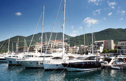 Porto Montenegro Royalty Free Stock Photo
