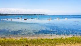 porto na baía Anse de Perros perto de Perros-Guirec fotos de stock royalty free