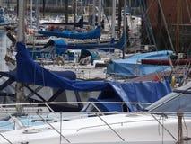 Porto ocupado Fotos de Stock
