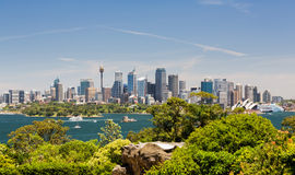 Porto panoramico drammatico di Sydney della foto fotografia stock