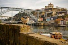 Porto Portugal Royalty-vrije Stock Foto's