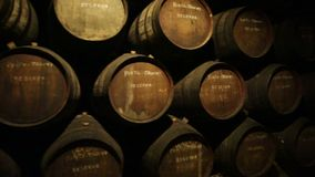 Ferreira Winery Porto stock video