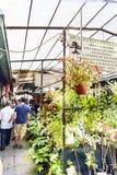 Porto, Portugal 12 de agosto de 2017: As tendas da planta em um dos corredores do mercado chamado fazem Bolhao com um telhado e u Imagens de Stock Royalty Free