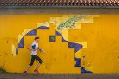 PORTO, PORTUGAL - tuile portugaise d'azulejo sur une des rues de la vieille ville Images libres de droits