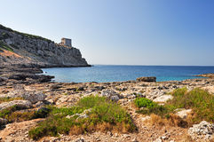 Porto Selvaggio in Salento Royalty Free Stock Image