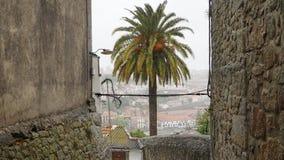 Porto-Straßen, Portugal Stockbild