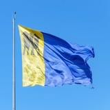 Porto Velho& x27;s flag. Blue and yellow flag with the symbol of Tres Stock Photography