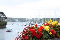 Porto vermelho e amarelo Cork Ireland de Kinsale das flores imagens de stock