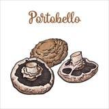 套portobello可食的蘑菇 库存图片