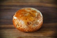 Portobello brązu pieczarka, jadalni grzyby Zdjęcie Royalty Free