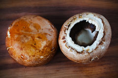 Portobello brunissent le champignon, champignons comestibles sur le hachoir Image stock