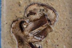 Portobello mushroom sauce. Brown color royalty free stock image