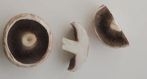 A Portobello Mushroom whole and divided. A Portobello Mushroom showing intricate gills and internal goodness. An image to promote healthy eating stock images