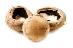 Portobello Mushrooms Royalty Free Stock Photography