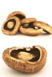 Portobello Pilze 1 stockfotografie