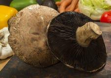 Portobello Pilze Lizenzfreie Stockfotografie