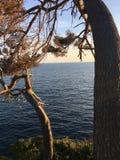 Portofino immagini stock libere da diritti