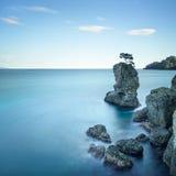 Portofino park. Pine tree rock cliff. Long exposure. Liguria, It royalty free stock image