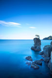 Portofino park. Pine tree rock cliff. Long exposure. Liguria, It Stock Images