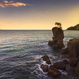 Portofino park. Pine tree rock cliff on sunset. Ligury, Italy Stock Images