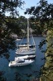 Portofino Tourist boats moored in the harbor Stock Photo