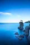 Portofinopark De rotsklip van de pijnboomboom Lange Blootstelling Ligurië, het Stock Afbeeldingen