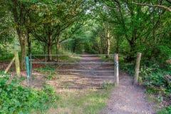 Portone chiuso del ferro che conduce ad un sentiero nel bosco Immagine Stock
