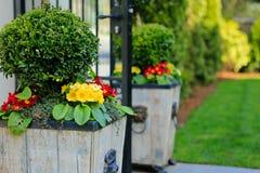 Portone con i vasi da fiori di legno Fotografia Stock Libera da Diritti