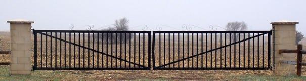 Portone del ferro battuto con progettazione di flourish sulla cima Immagine Stock