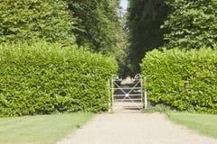 Portone dell'entrata del giardino nel parco dell'albero dentro la barriera verde Fotografia Stock Libera da Diritti