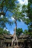 Portone della Cambogia al tempio Immagini Stock Libere da Diritti