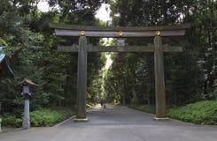 Portone di Torii a Meiji Jingu Fotografie Stock Libere da Diritti