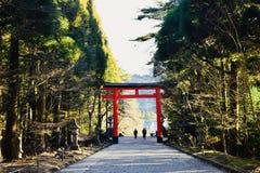 Portone di un tempio a Kagoshima, Giappone, con molti alberi verdi fotografia stock libera da diritti