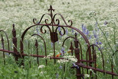 Portone e fiori Immagine Stock
