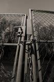 Portone rotto in bianco e nero Fotografia Stock Libera da Diritti