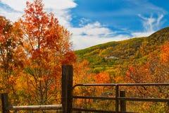 Portone sulla grande MESA in autunno Fotografie Stock
