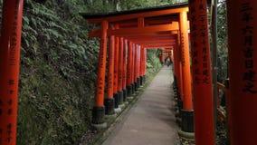 Portoni di Fushimi Inari Taisha Torii stock footage