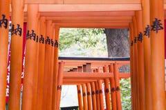 Portoni di Torii nel Giappone Fotografia Stock
