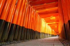 Portoni di Torii, santuario di Fushimi Inari, Kyoto, Giappone Immagini Stock Libere da Diritti