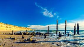 Portowa Willunga plaża, Adelaide Zdjęcia Stock