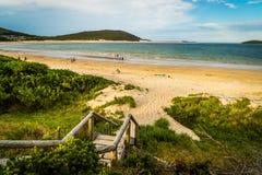 Portowe Stephens plaże i widok ocean w Nowych południowych waliach, Australia zdjęcie royalty free