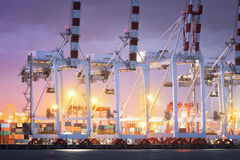 Portowi żurawie pracuje w porcie morskim, żuraw zafrachtowania dokują, Pracujący żurawia most w stoczni przy zmierzchem zdjęcia stock