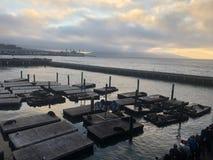 Portowy San Francisco fotografia stock