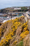 Portpatrick village and Harbour Royalty Free Stock Photos