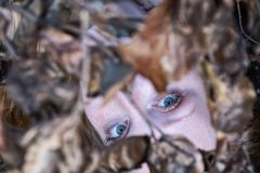 Porträt einer jungen rothaarigen Dame unter den Niederlassungen von Autumn Leaves Background draußen stockfotos