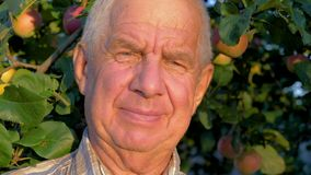Porträt-älterer kaukasischer Mann mit Falten und Gray Hair In Garden In-Sommer stock footage