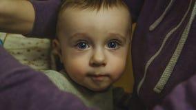 Porträt, blaue Augen, große Augen, kleiner Junge, schön, nett, kaukasisch, Kind, Kind, glücklich, Junge stockfotografie