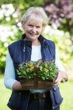 Porträt der älteren Frau arbeitend im Garten Lizenzfreie Stockfotos
