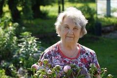 Porträt der alten lächelnden Frau im Park Lizenzfreie Stockbilder